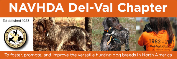 NAVHDA Logo, NAVHDA Del-Val Chapter.  To foster, promote, and improve the versatile hunting dog breeds in North America